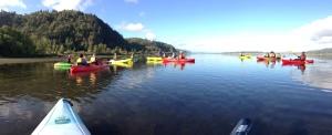 Kayaking Rooster 1